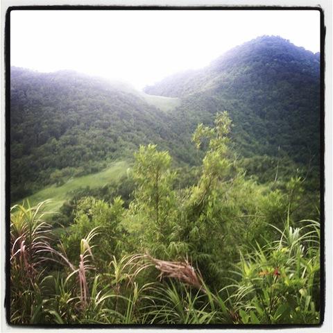 View sa Mt. Manabu