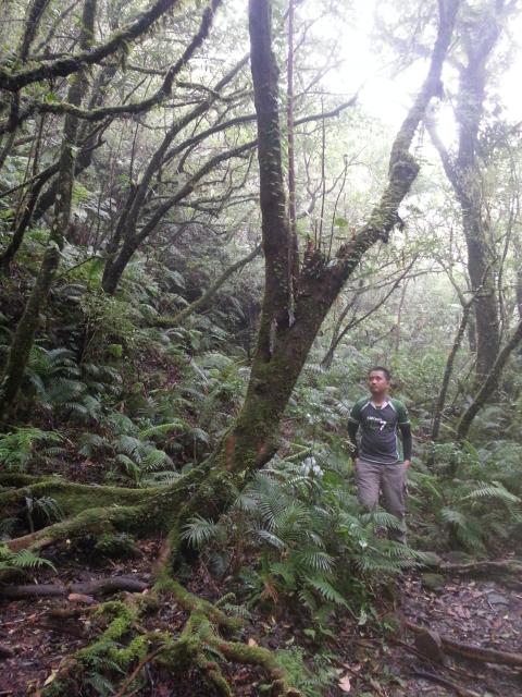 Sa trail kang Mt. Cristobal