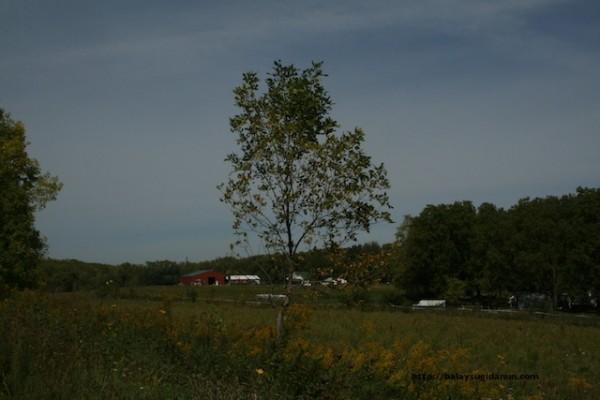 Ang prairie sa Iowa.