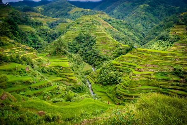 Banaue Rice Terraces / JC Fonte