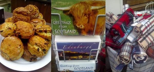Scones, Highland Cow, Tartan Scarf