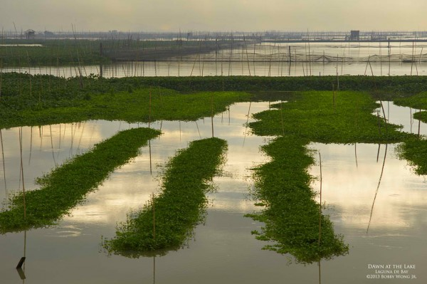 'Dawn at the Lake' / Laguna de Bay /Bobby Wong, Jr. /www.postcardsfrommanila.com