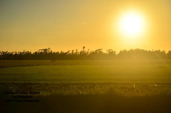 janlagasi sunset