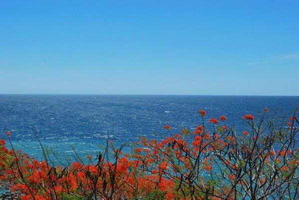 View sa tag-irinit sa Tiolas, Lawigan, San Joaquin, Iloilo / Litrato ni Noly Pronto /Via Google Map